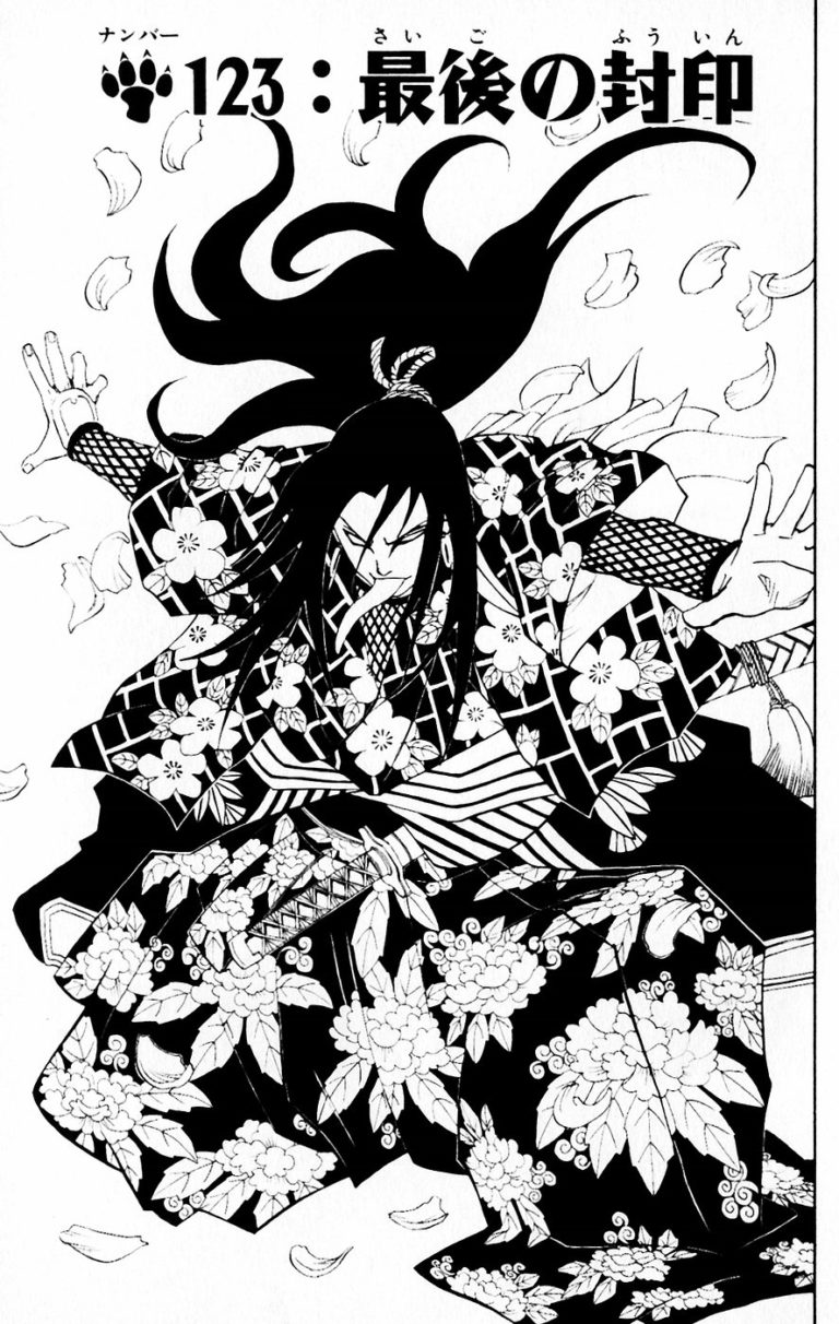 Naruto Chapter 123 Cover Image