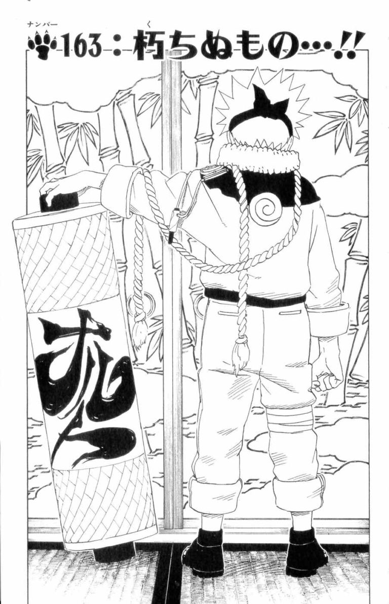 Naruto Chapter 163 Cover Image