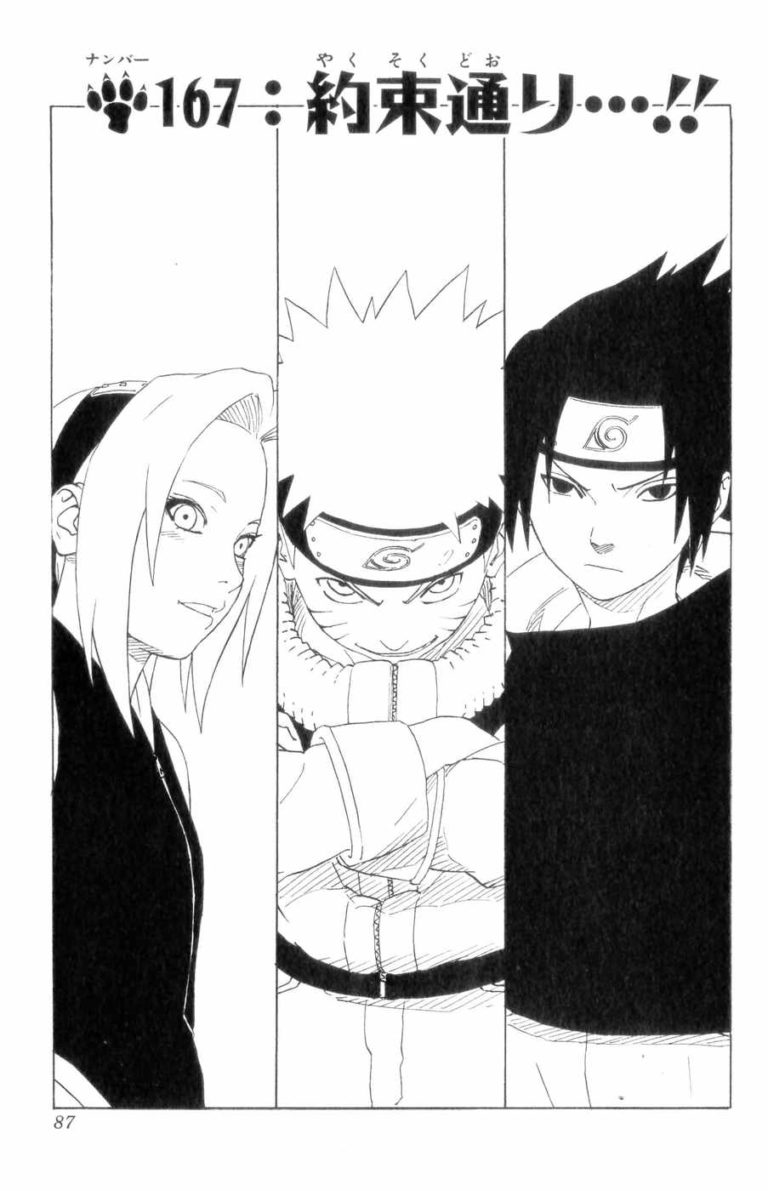Naruto Chapter 167 Cover Image