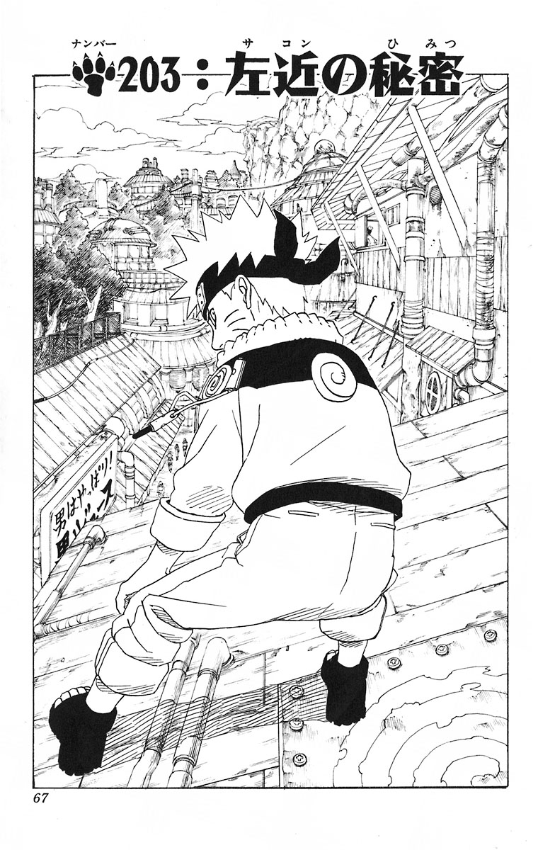 Naruto Chapter 203 Cover Image