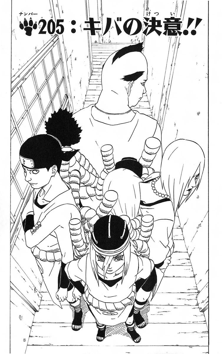 Naruto Chapter 205 Cover Image