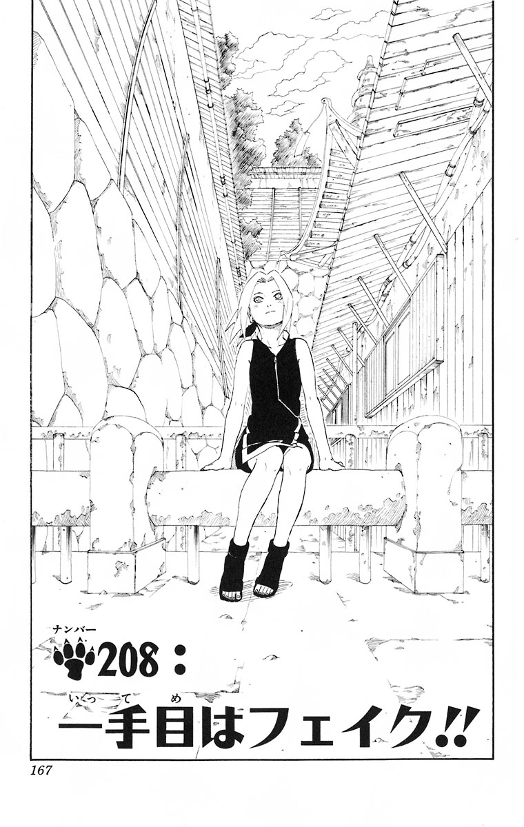 Naruto Chapter 208 Cover Image