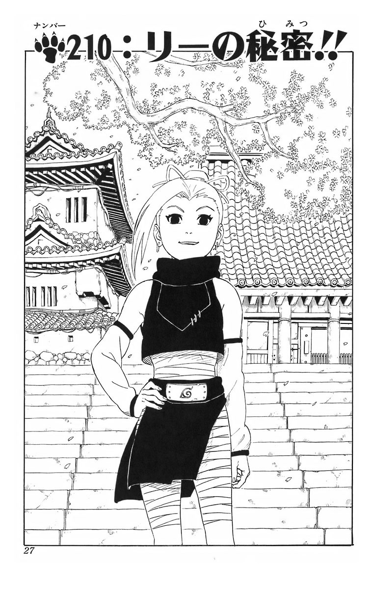 Naruto Chapter 210 Cover Image