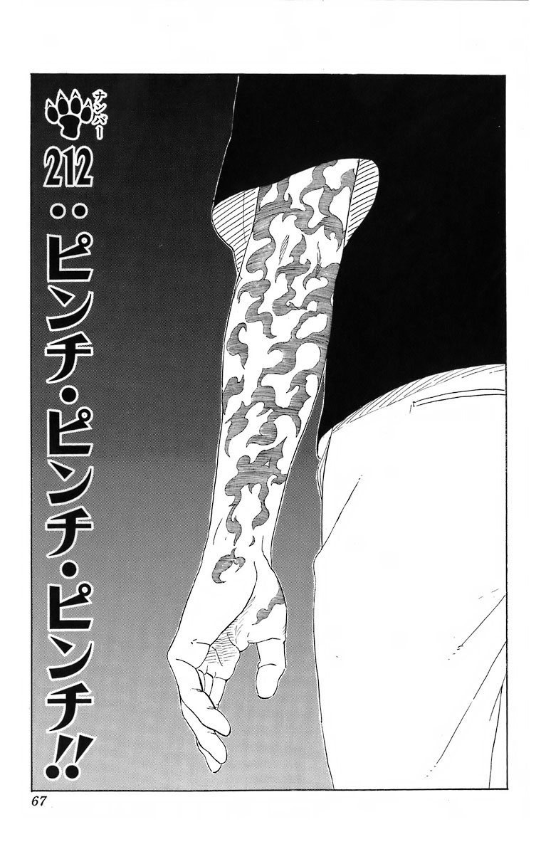 Naruto Chapter 212 Cover Image
