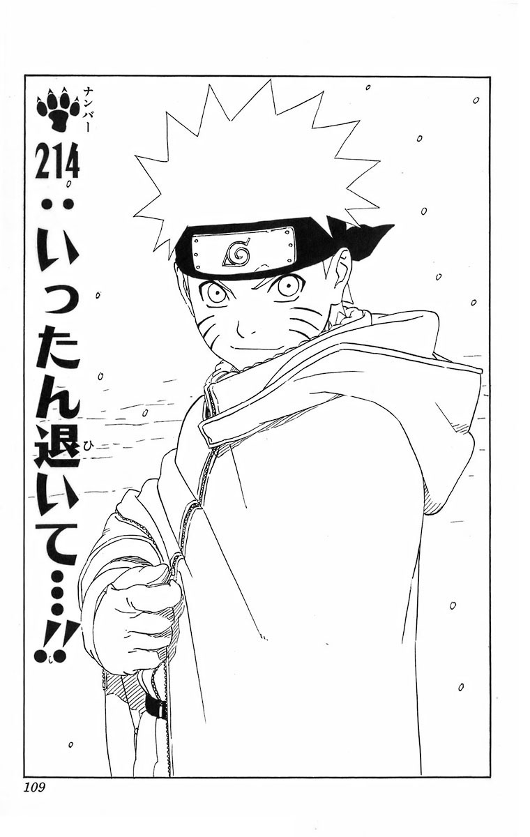 Naruto Chapter 214 Cover Image