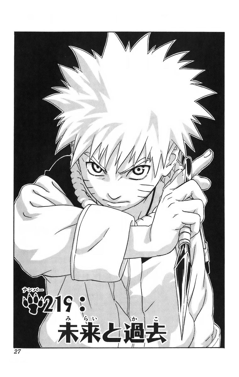 Naruto Chapter 219 Cover Image
