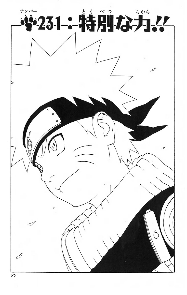 Naruto Chapter 231 Cover Image