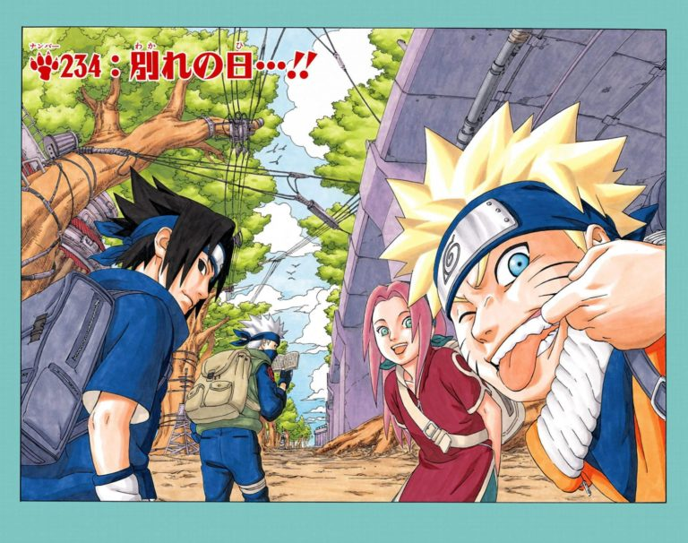 Naruto Chapter 234 Cover Image