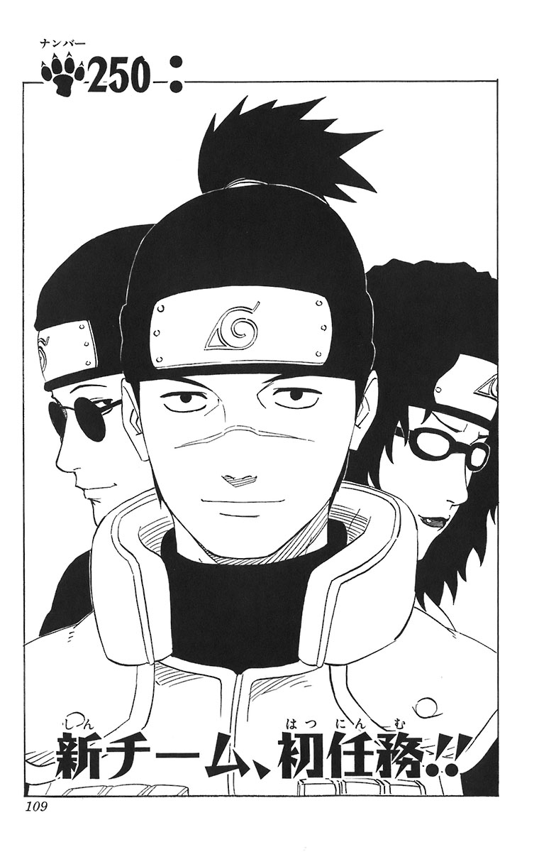 Naruto Chapter 250 Cover Image