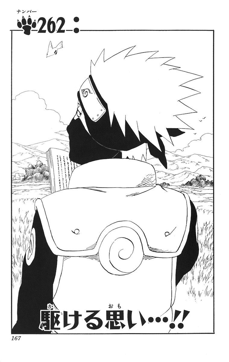 Naruto Chapter 262 Cover Image