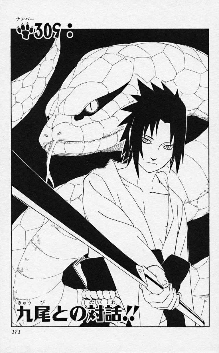 Naruto Chapter 309 Cover Image