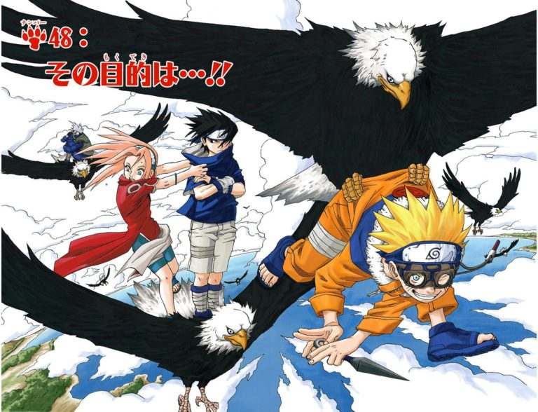 Naruto Chapter 48 Cover Image