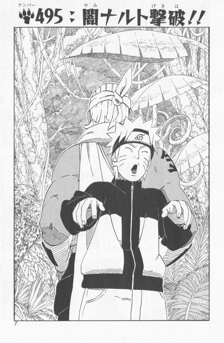 Naruto Chapter 495 Cover Image