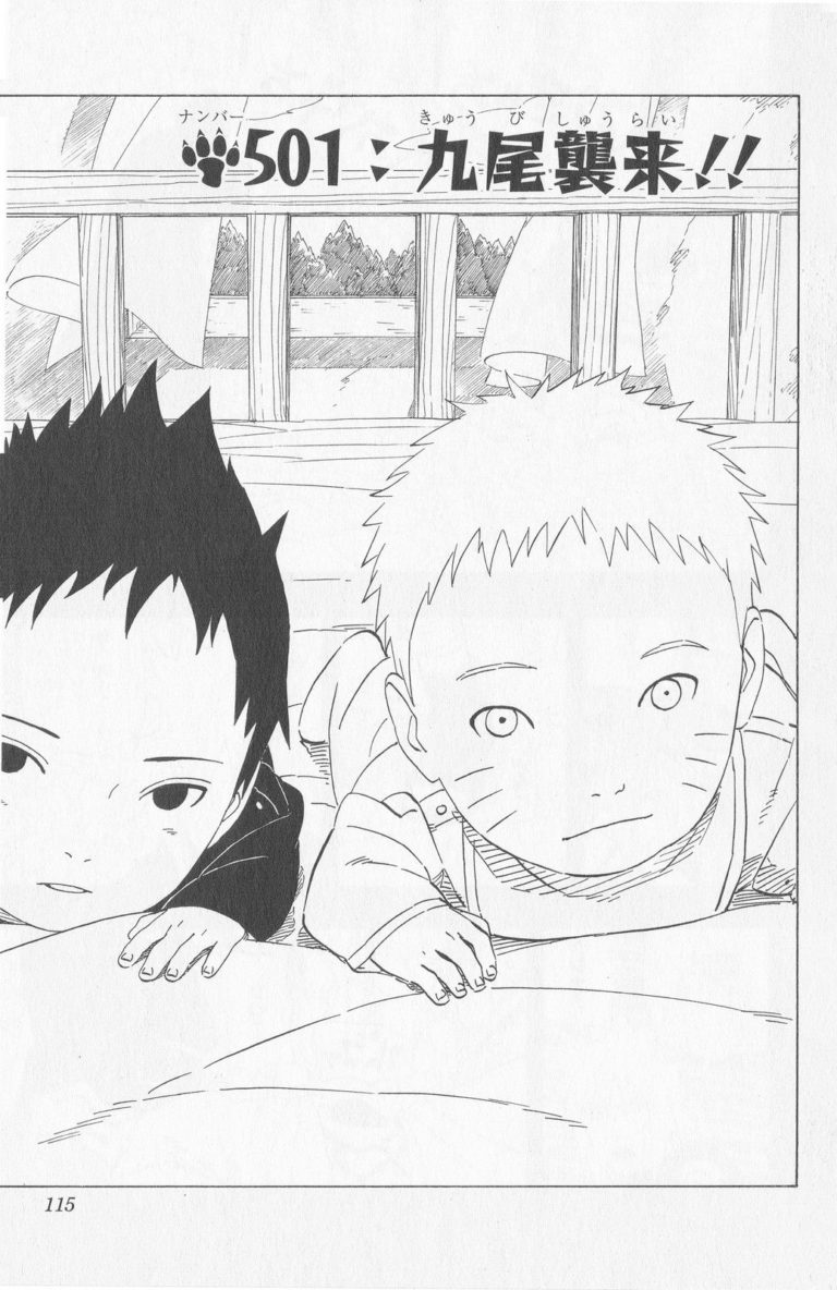 Naruto Chapter 501 Cover Image