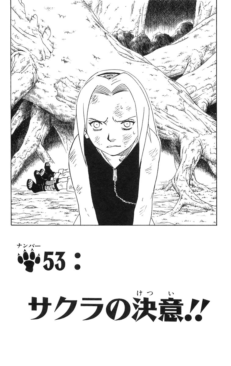 Naruto Chapter 53 Cover Image