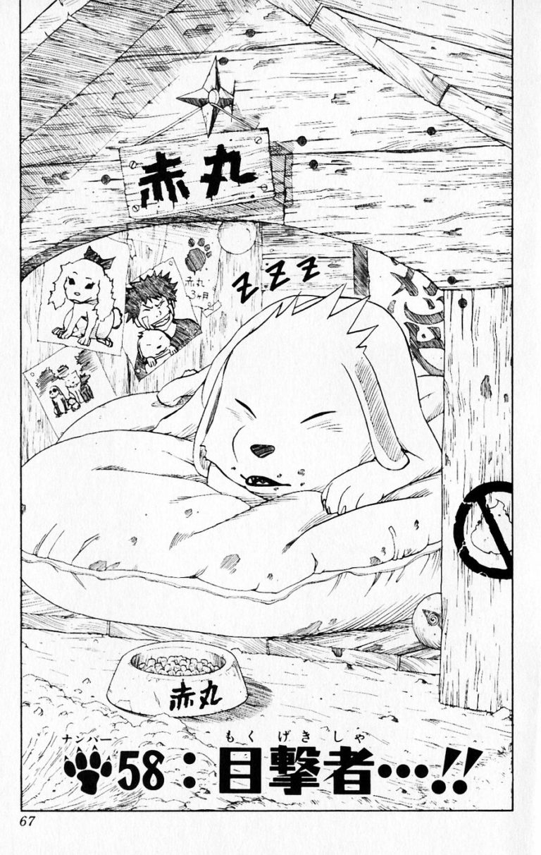 Naruto Chapter 58 Cover Image